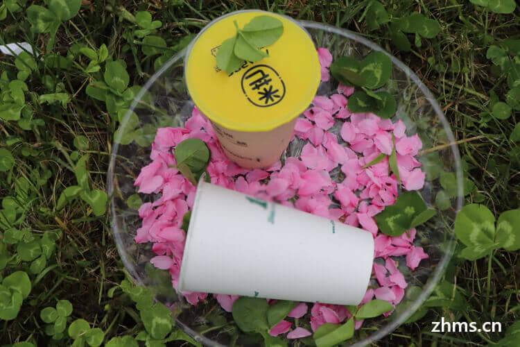 草本奶茶加盟流程