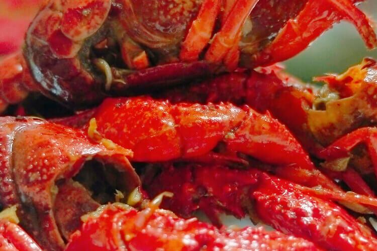 好多人都说西安有一家小龙虾特别好吃,西安那家小龙虾好吃吗?