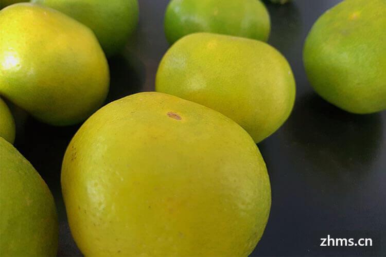 水果加盟店排行榜前十的品牌口碑如何