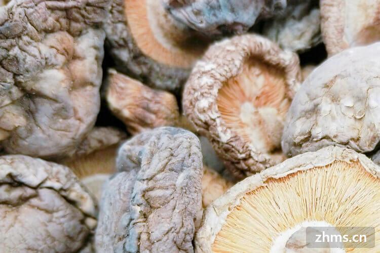 干香菇的价格是多少?有贵的也有便宜的