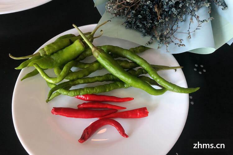 青椒的做法有哪些