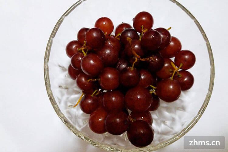什么葡萄品种最好吃