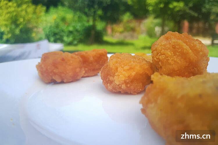 九龙法式炸鸡相似图片1