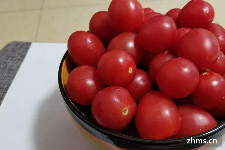 圣女果与西红柿的区别都有哪些呢?