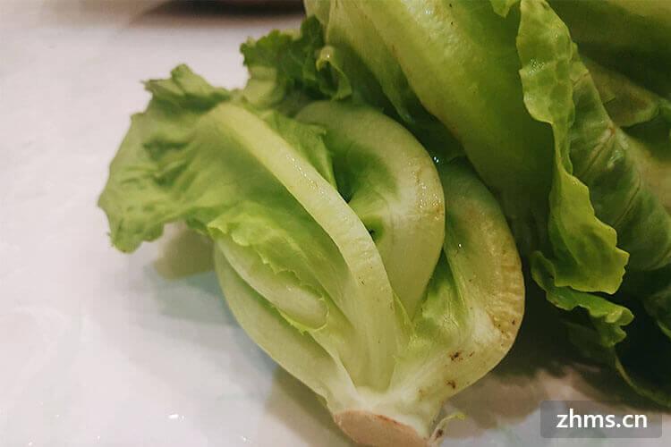 蠔油生菜的做法