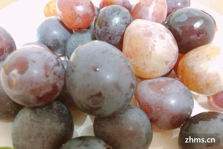 哪种葡萄最好吃