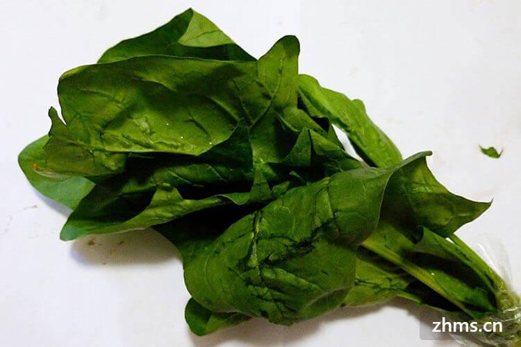 菠菜能和虾一起吃吗,吃菠菜要注意什么?