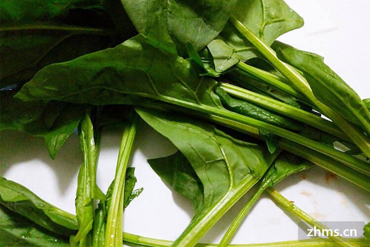 春季什么蔬菜最贵