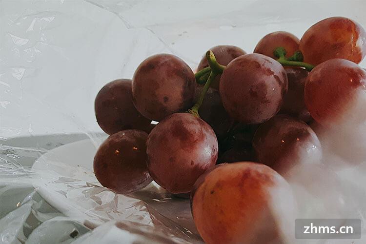 大棚葡萄种植技术