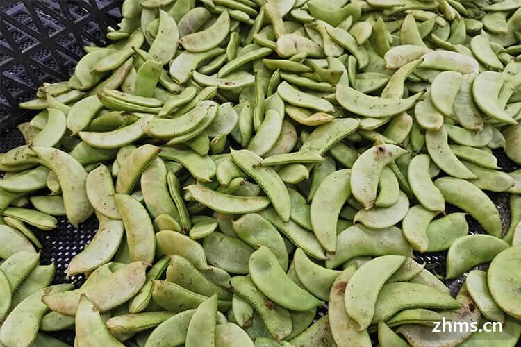 扁豆哪种好,你喜欢吃吃哪一种呢