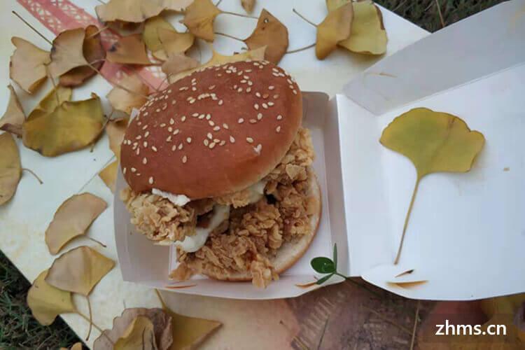 艾力克炸鸡汉堡相似图