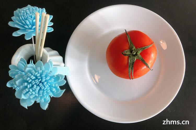 鱼可以用西红柿炖吗?味道怎么样?