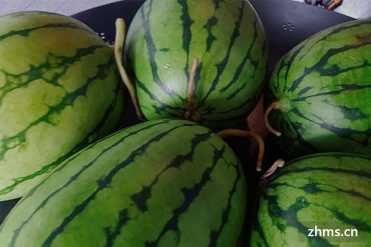 西瓜怎么选甜的