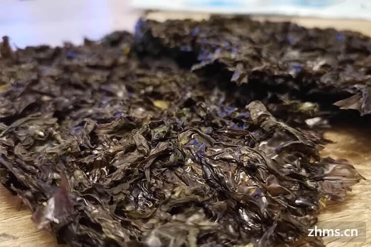 紫菜可以做什么汤?很多菜都可以和它一起煮