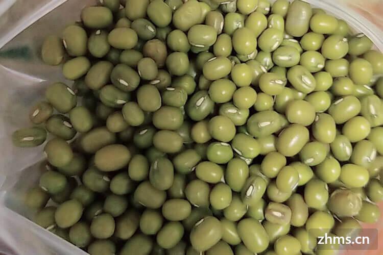 绿豆怎么煮