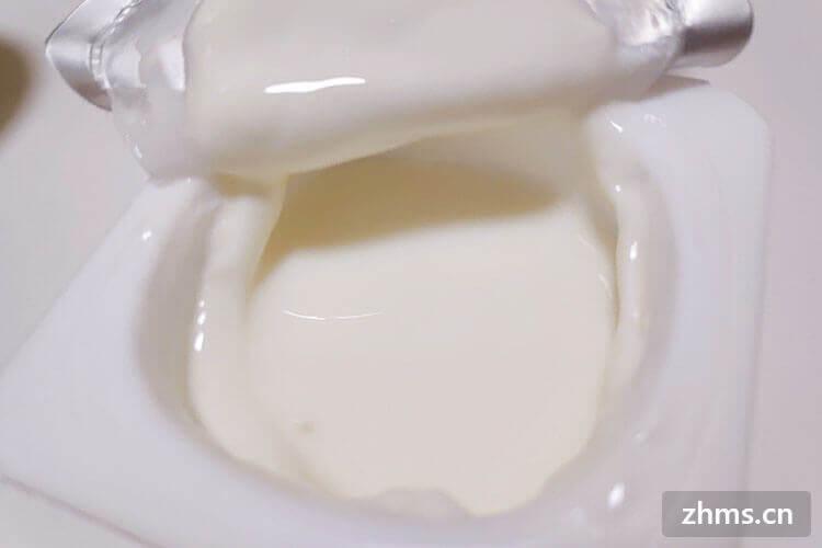 一只酸奶牛加盟费好高,值不值得加盟呢?