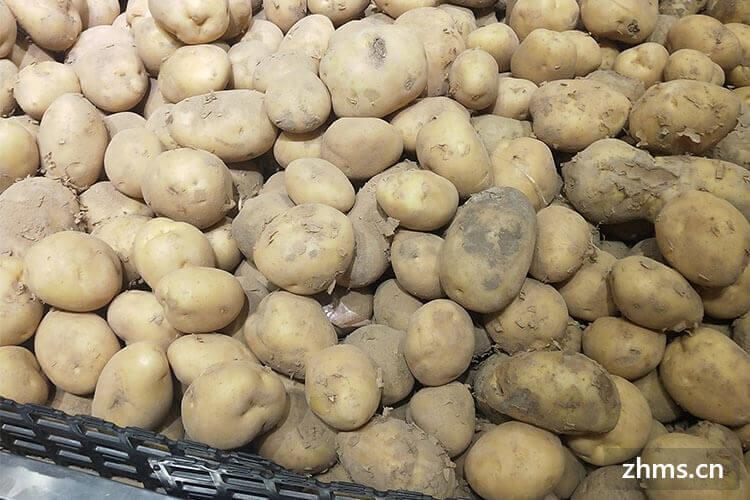 薯条怎么做才外脆里嫩呢?小编告诉你