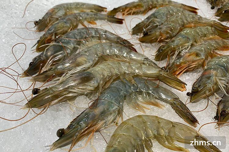 大虾煮多久