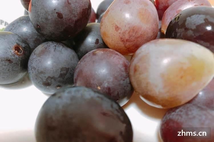 但是市面上那么多的葡萄,想知道夏黑葡萄与巨峰葡萄的区别