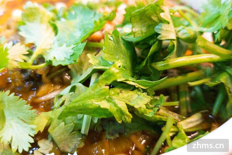 香菜葱花可以放在一起吃吗?