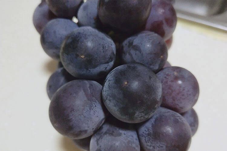 看到一种绿色葡萄,超级贵,想问一下最贵的绿色葡萄是什么品种?