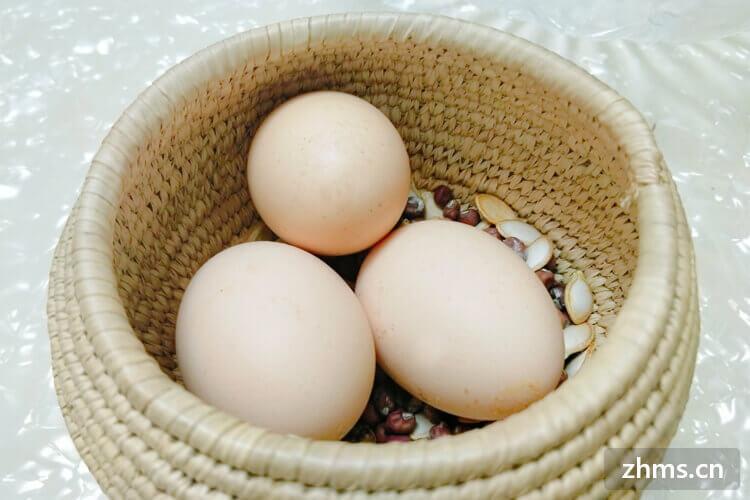 减肥早上吃鸡蛋