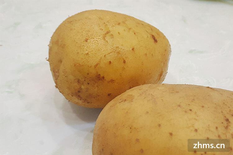 怎么煮土豆粉