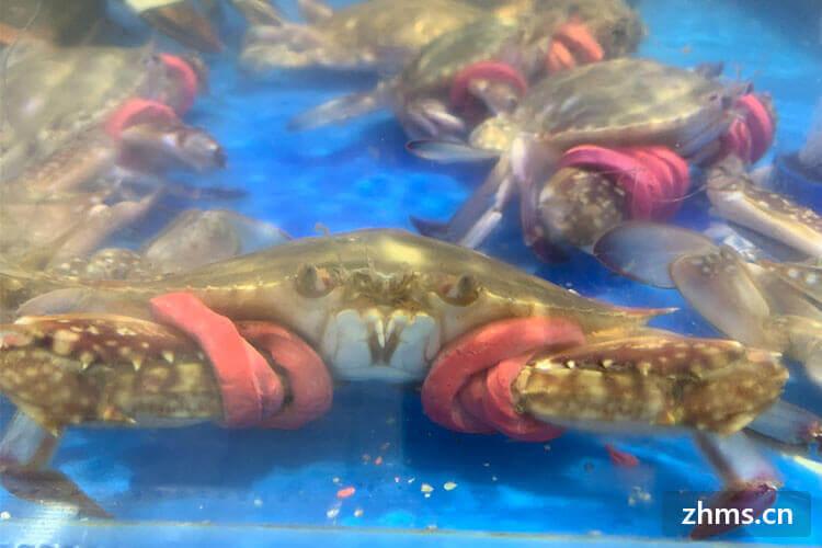 蒸螃蟹时间