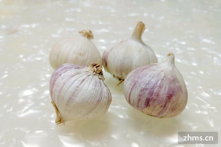 大蒜头发芽能吃吗?发芽之后怎么处理?