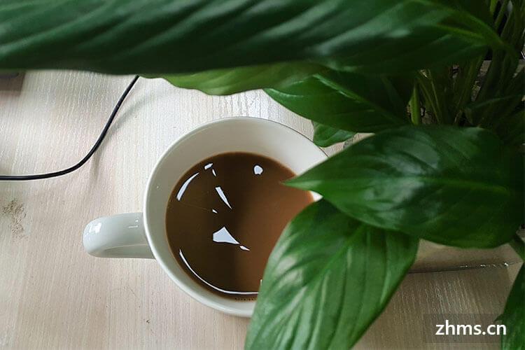 luckin咖啡加盟费用是多少?大品牌,小成本也可投资!
