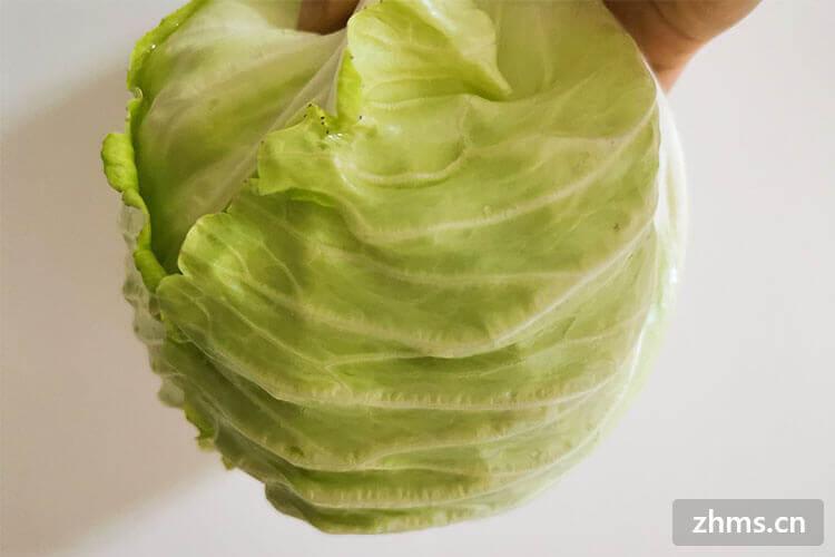 卷心菜的营养价值,卷心菜当中居然有这些营养,你都知道吗?