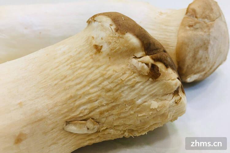 蘑菇炒肉的做法这么简单你不考虑一下吗