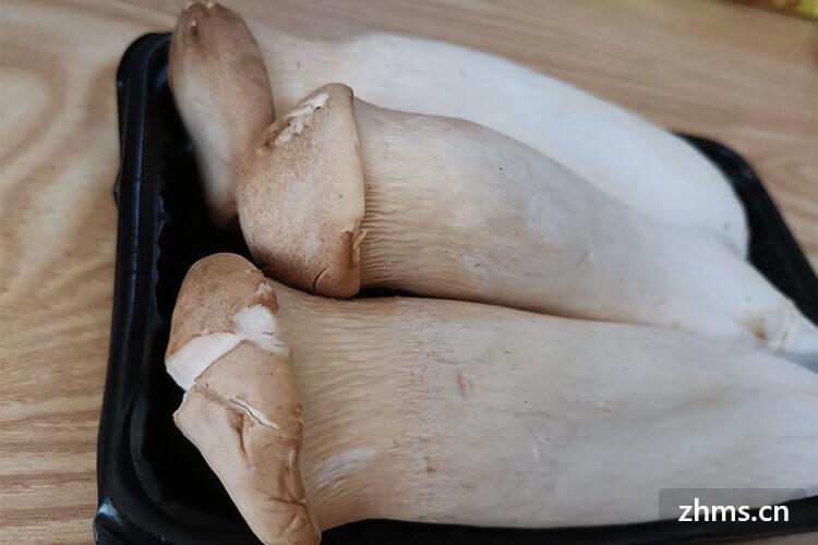 蘑菇炒肉怎么炒好吃吗