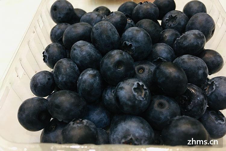 藍莓山藥的做法你知道嗎