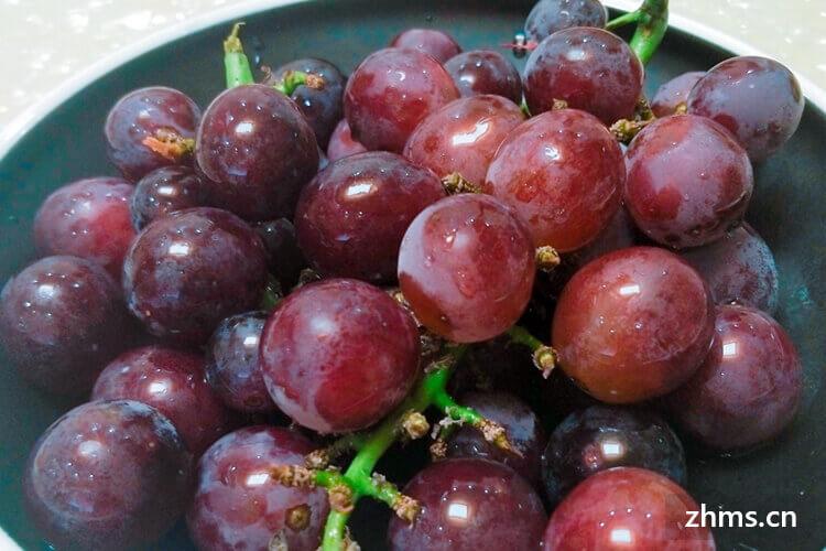 夏黑葡萄是提子吗