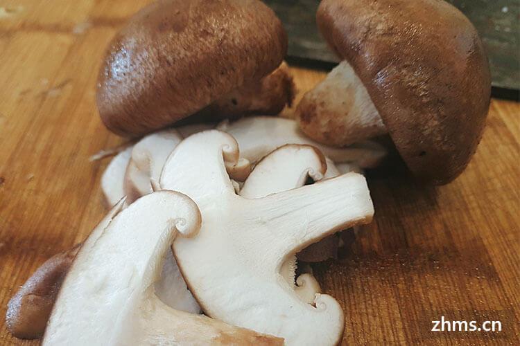 你知道香菇炒什么好吃吗?