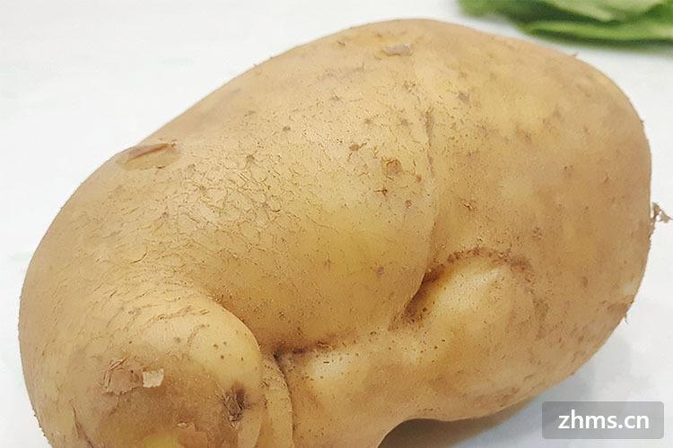 土豆炖鸡怎么做最好吃,教你百种做法
