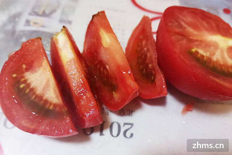 请问番茄是西红柿吗?我不太了解耶!