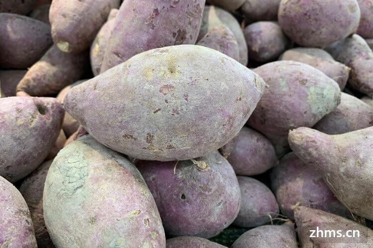 红薯做薯片