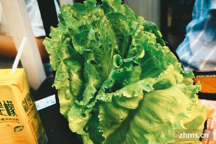 給你總結青菜是怎么做好吃的幾個方法