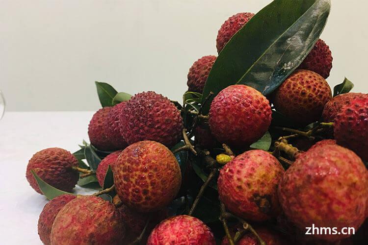 桂味荔枝几月份成熟上市