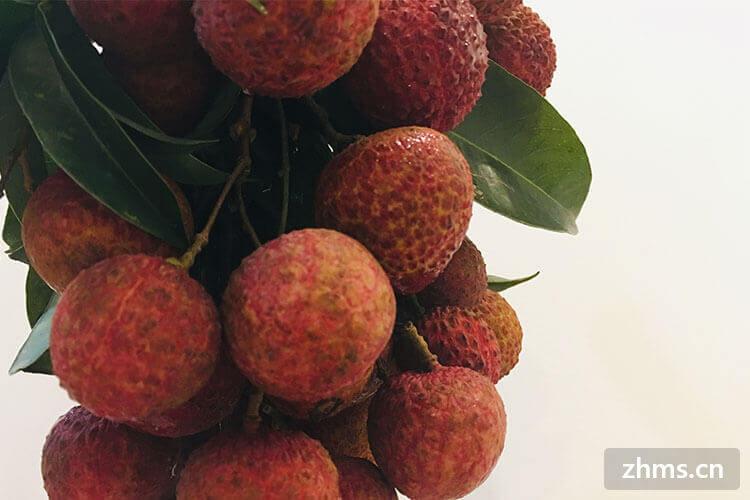 含锌最多的水果