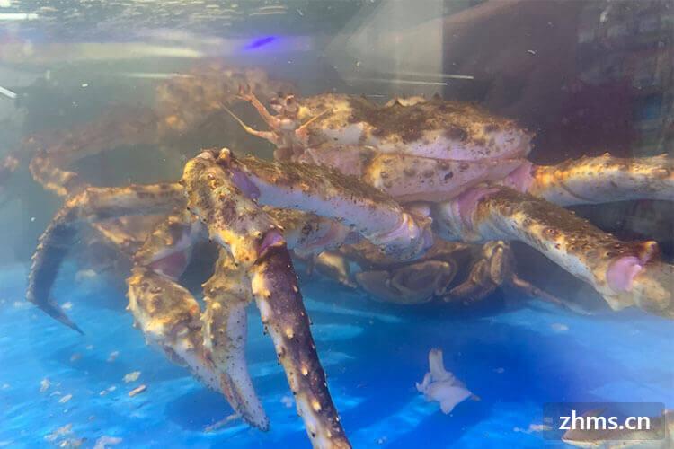 煮蟹要多久,螃蟹如何挑选