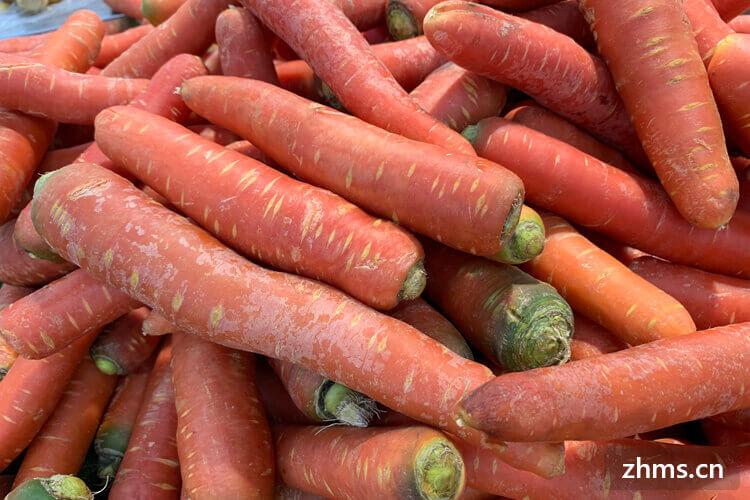 素炒胡萝卜有什么营养?