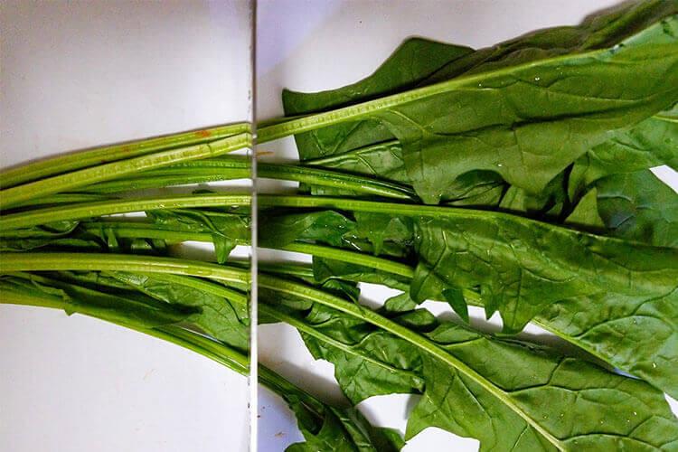 买了些菠菜,想问一下菠菜面条菠菜要焯水吗?