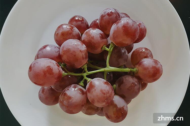 中国葡萄之乡