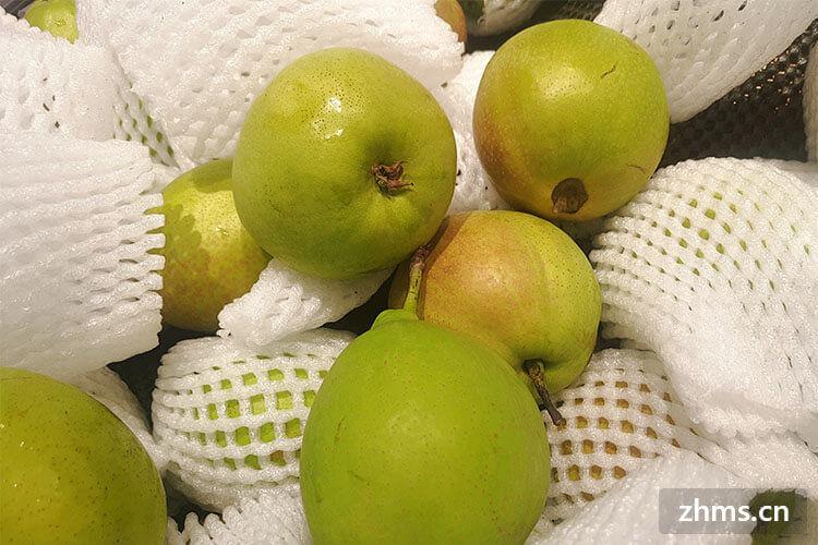 梨产妇能吃吗