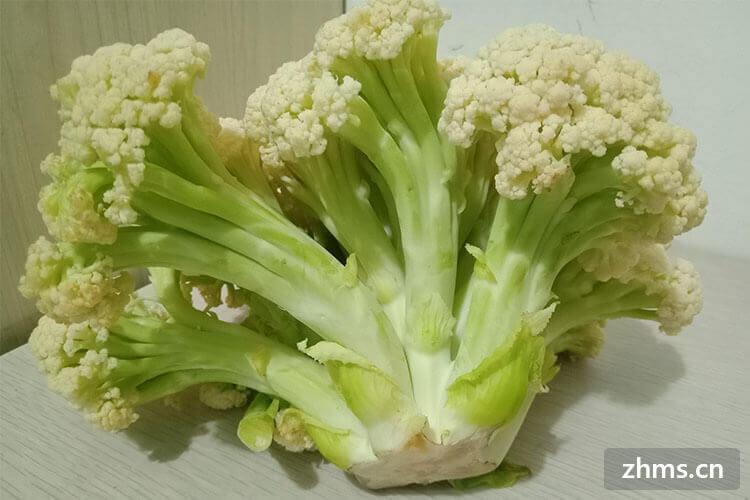 什么是花菜,又该怎么吃呢