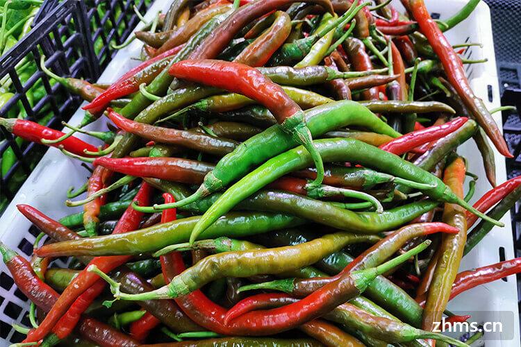 小紅尖辣椒怎么做好吃