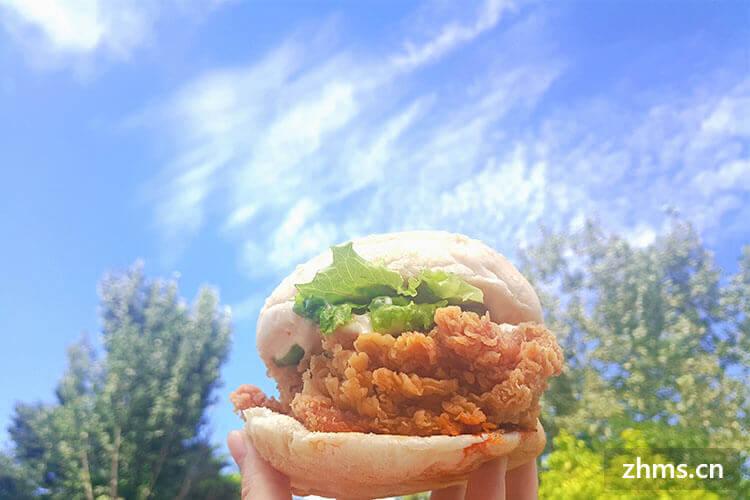 嘟市基炸鸡汉堡相似图片2